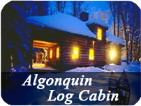 log-cabin-images