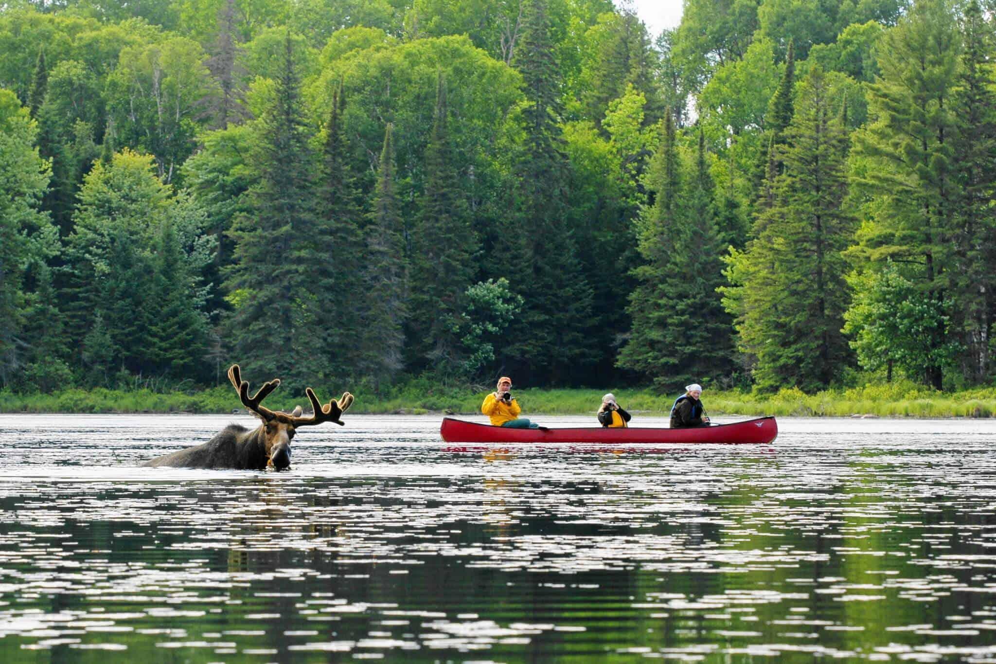 Day Trip Up To Island Lake Lodge