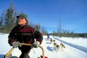 algonquin-dog-sled