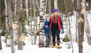 snowshoe in Algonquin forest