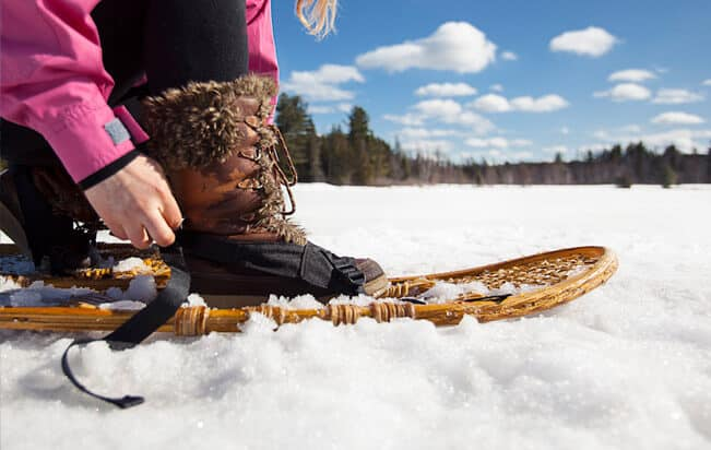 Algonquin snowshoe adventure