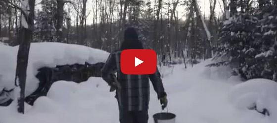 video of Algonquin park log cabin