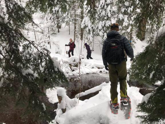 Snowshoe, Winter, Creek, Water, Cold, Algonquin Park
