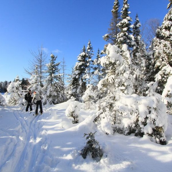 island-ski